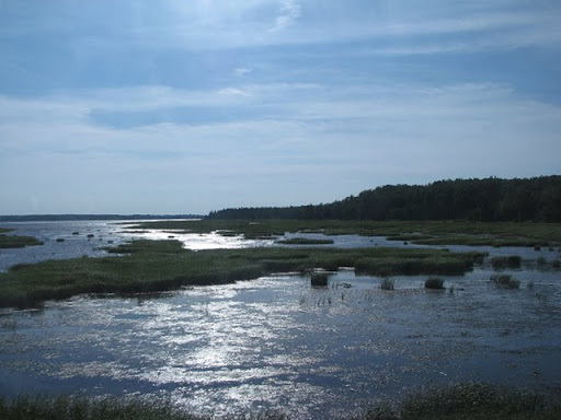 Brule Point, Nova Scotia. Mile2694